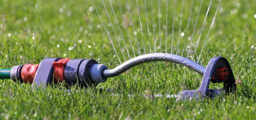 sproeier tuin