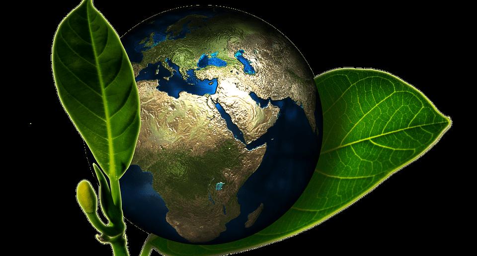als zzper milieubewust