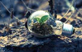 De laatste trends op het gebied van milieu